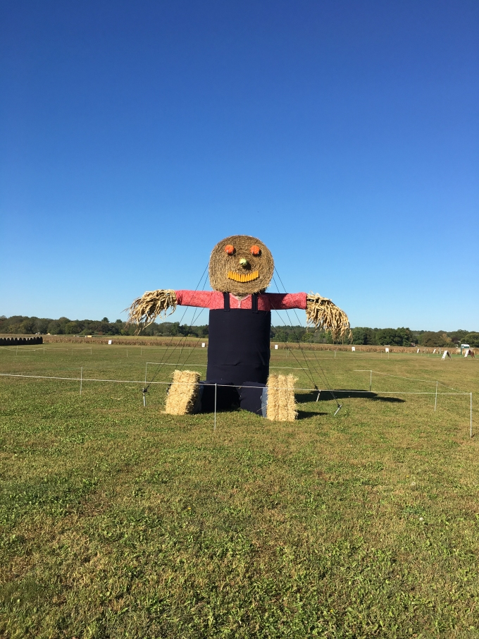 schartner-scarecrow-2016-faye-brown